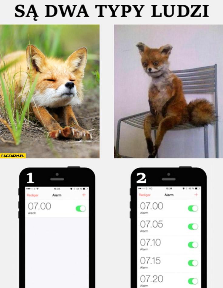 Są dwa typy ludzi lis rano poranny budzik