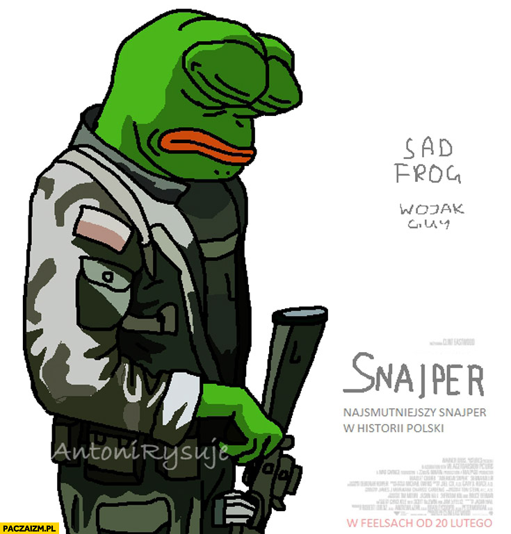 Sad frog snajper smutna żaba film