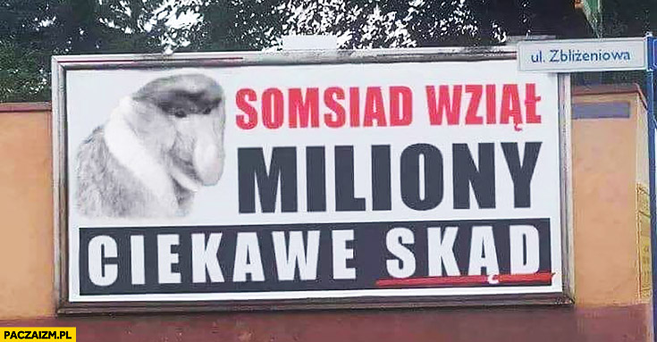 Sąsiad wziął miliony, ciekawe skąd? Reklama PiS billboard przeróbka typowy Polak nosacz małpa