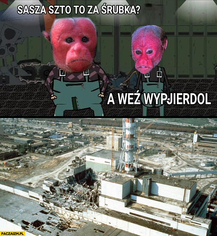 Sasza co to za śrubka? A weź wypierdziel rozwalona elektrownia atomowa typowy Ukrainiec małpa