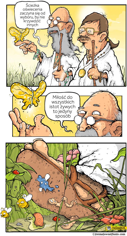 Ścieżka oświecenia nie krzywdzić innych