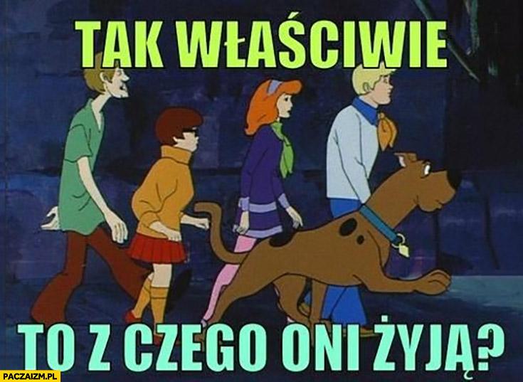 Scooby-Doo tak właściwie to z czego oni żyją?
