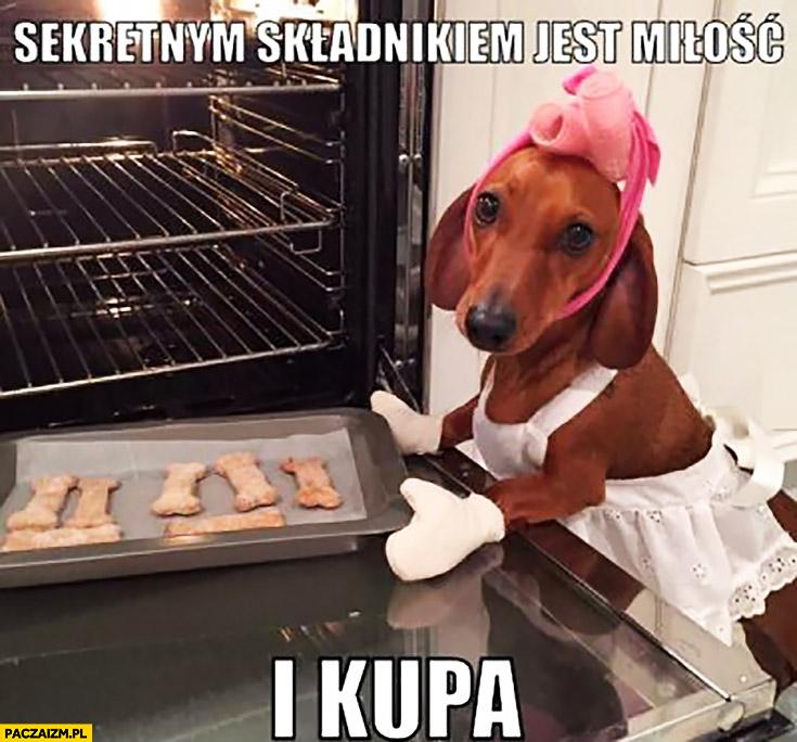 Sekretnym składnikiem ciasteczek jest miłość i kupa pies kucharz piekarz