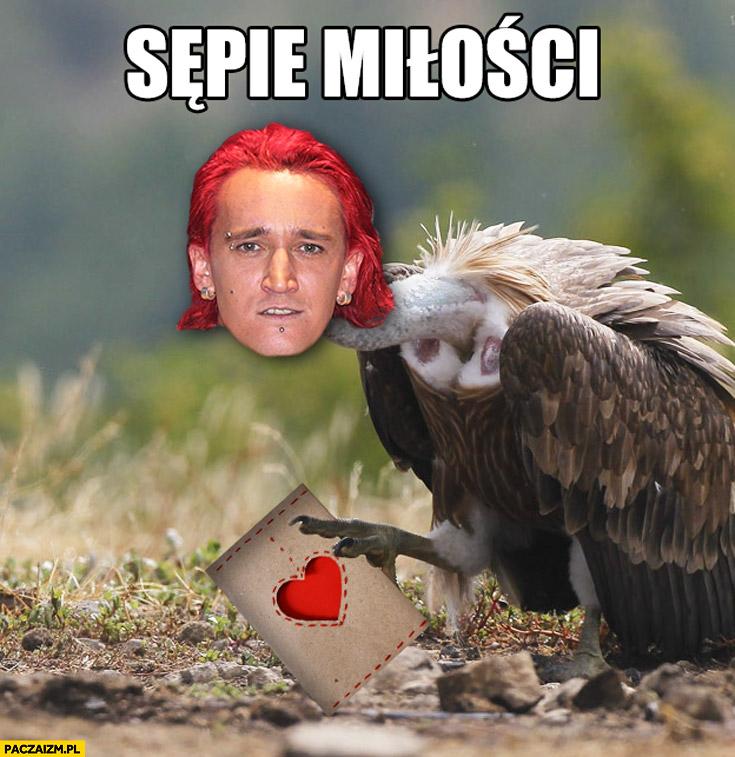 Sępie miłości Michał Wiśniewski sęp