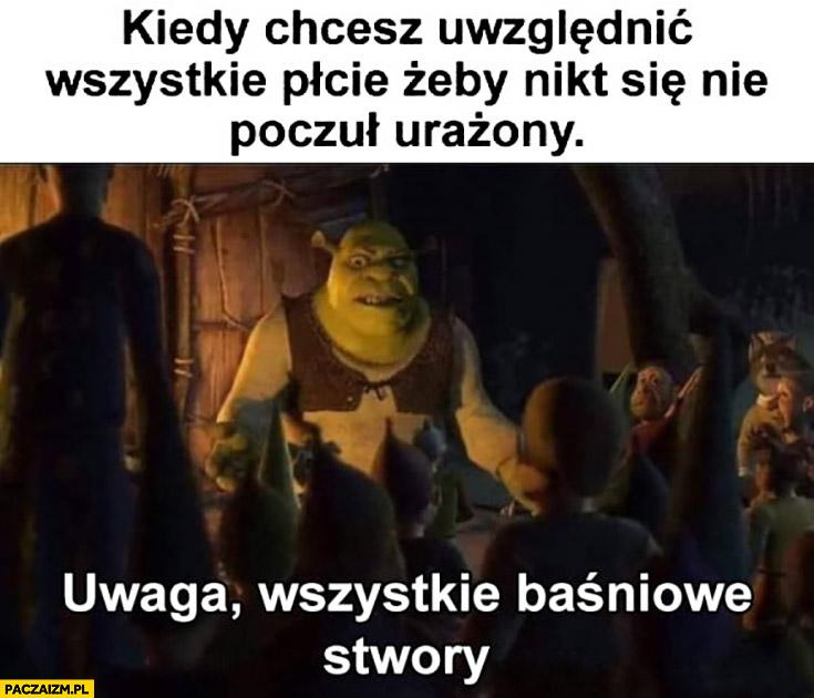 Shrek kiedy chcesz uwzględnić wszystkie płcie żeby nikt nie poczuł się urażony uwaga wszystkie baśniowe stwory