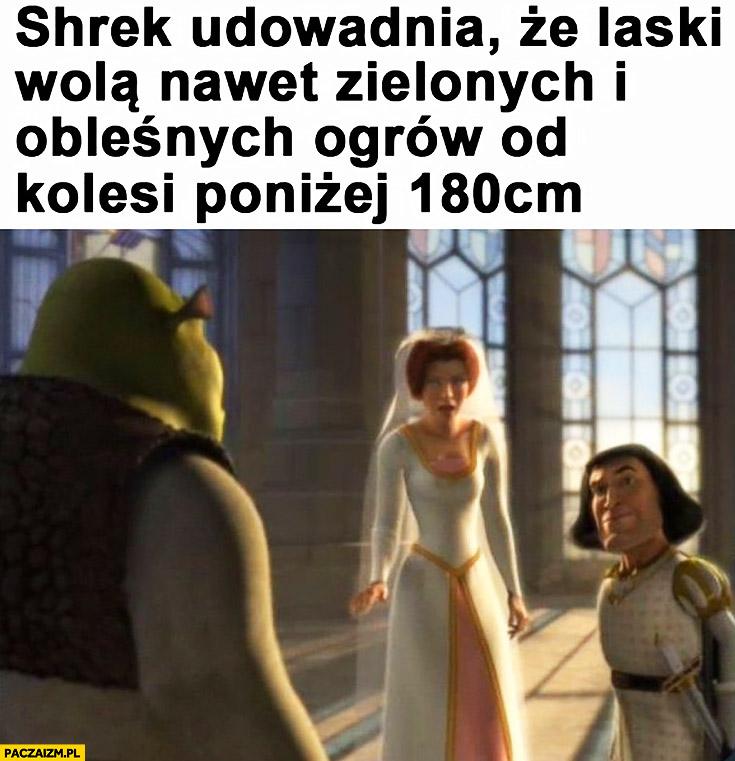 Shrek udowadnia, że laski wolą nawet zielonych i obleśnych ogrów od kolesi poniżej 180cm wzrostu