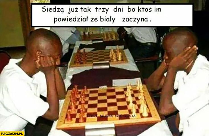 Siedzą tak trzy dni bo ktoś im powiedział, że biały zaczyna. Murzyni grają w szachy
