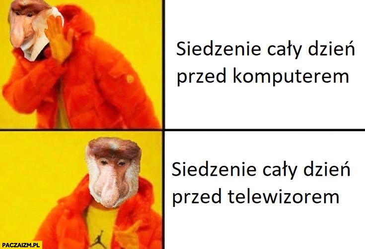 Siedzenie cały dzień przed komputerem vs siedzenie cały dzień przed telewizorem typowy Polak nosacz małpa