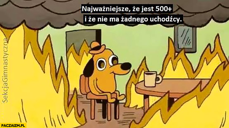 Siedzi w ogniu wszystko się pali najważniejsze, że jest 500 plus i że nie ma żadnego uchodźcy sekcja gimnastyczna