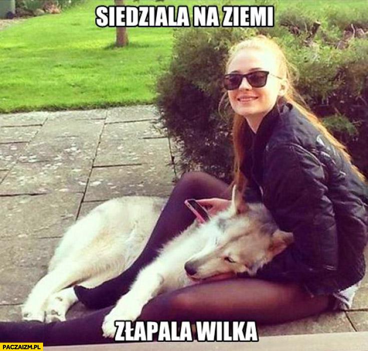 Siedziała na ziemi złapała wilka