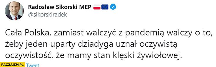 Sikorski tweet: cała Polska zamiast walczyć z pandemią walczy o to żeby jeden uparty dziadyga uznał oczywistą oczywistość, że mamy stan klęski żywiołowej