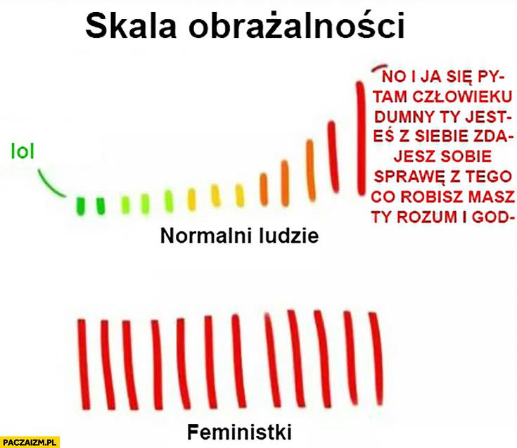 Skala obrażalności normalni ludzie vs feministki porównanie