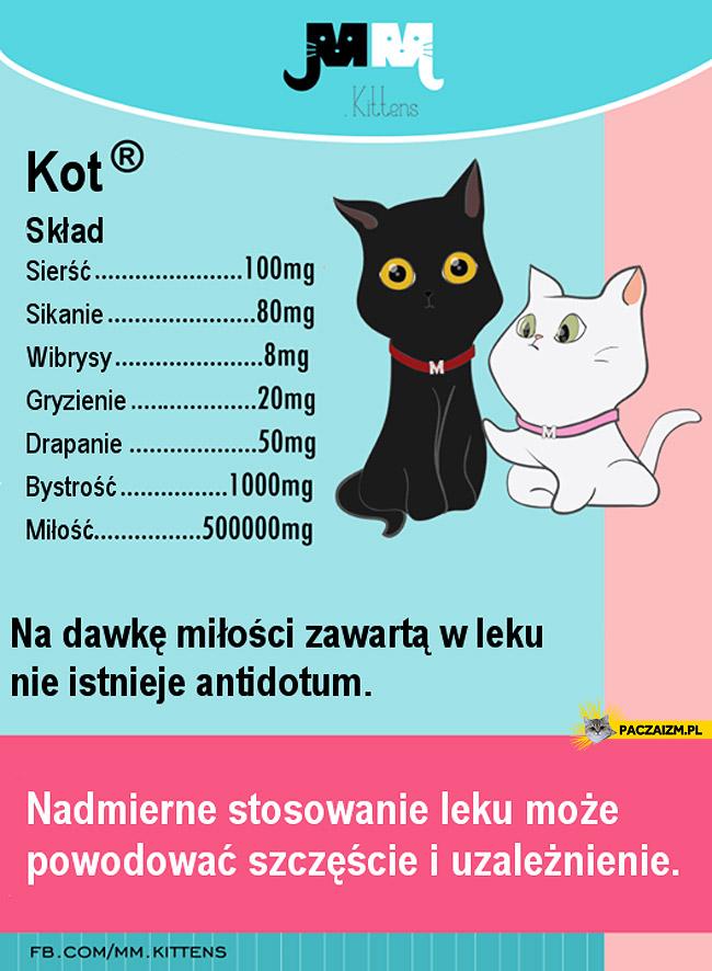 Skład kota