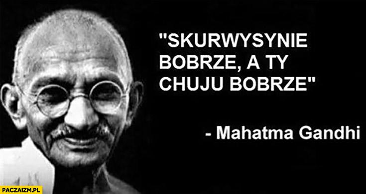 Skurczysynie bobrze a Ty kiju bobrze Mahatma Gandhi cytat przeróbka