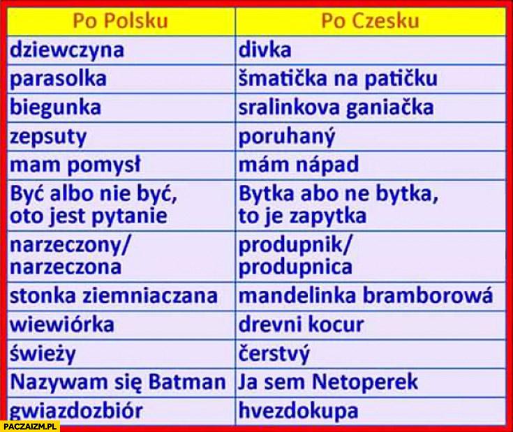 Słowa po polsku po czesku fail
