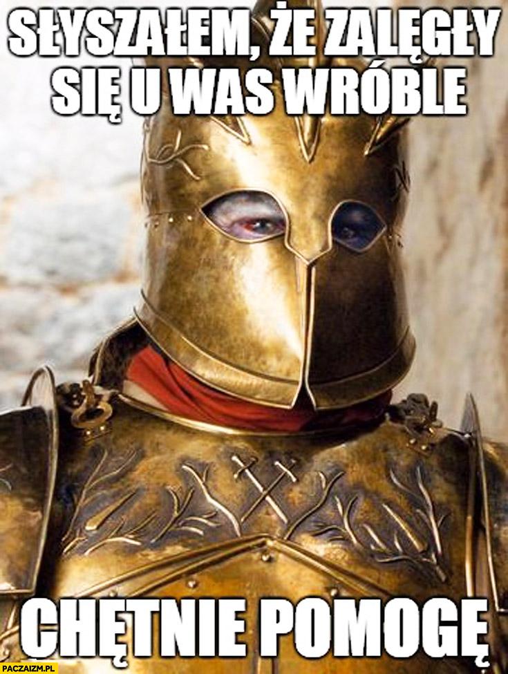 Słyszałem że zalęgły się u was wróble chętnie pomogę Gra o Tron