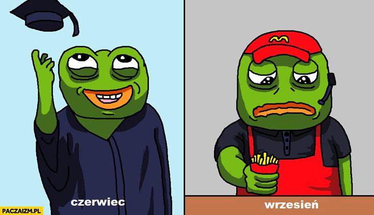 Smutna żaba czerwiec wrzesień obrona dyplomu McDonalds