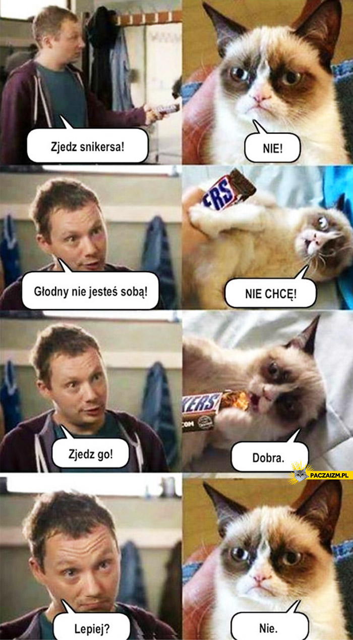 Snickers Grumpy Cat