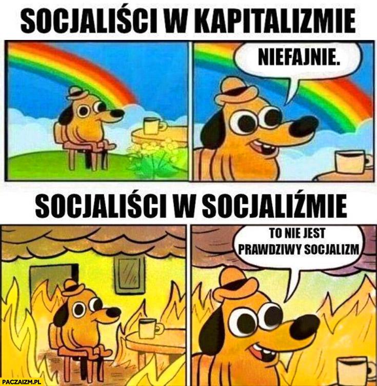 Socjaliści w kapitalizmie niefajnie vs socjaliści w socjalizmie to nie jest prawdziwy socjalizm