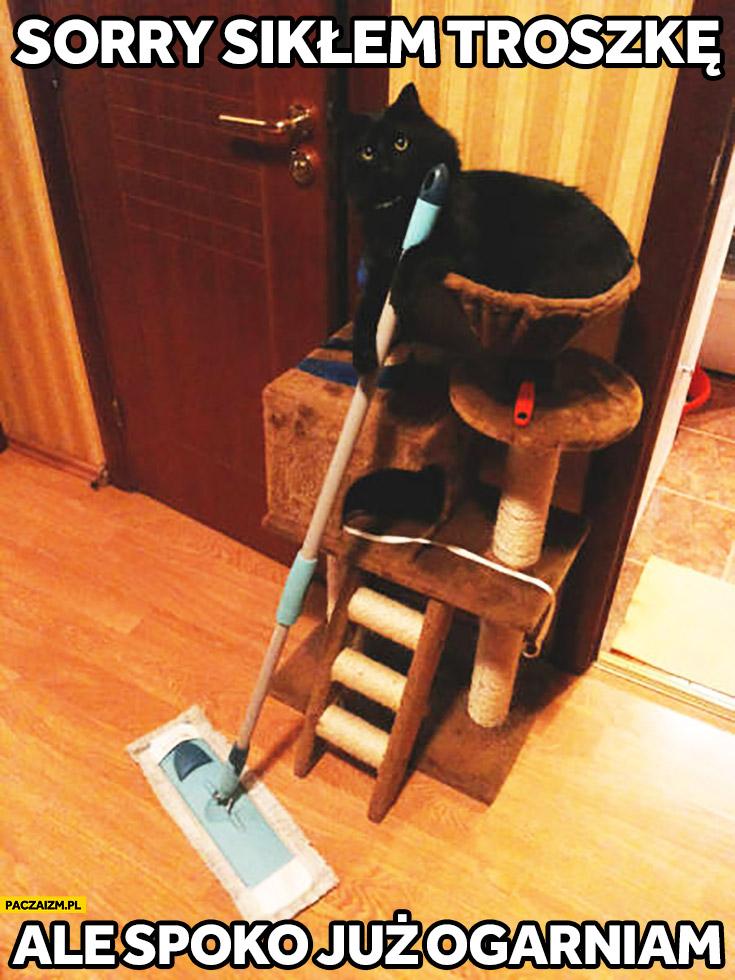 Sorry sikłem troszkę ale spoko już ogarniam kot sprząta podłogę