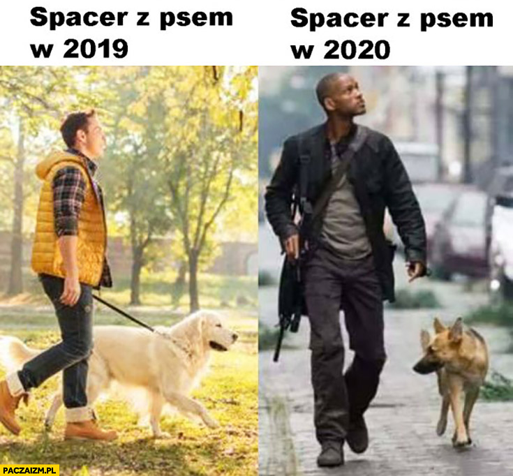 Spacer z psem w 2019 vs spacer z psem w 2020 Jestem Legendą