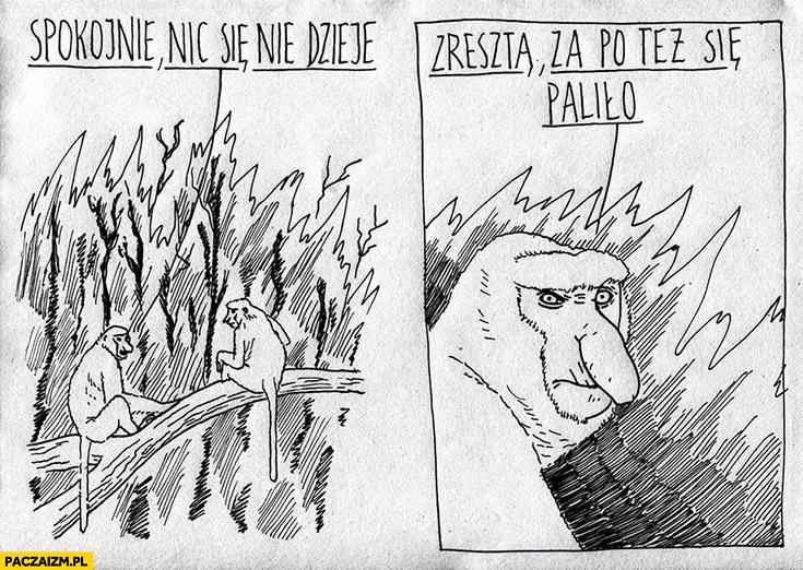 Spokojnie nic się nie dzieje, zresztą za PO też się paliło małpy nosacze pożar