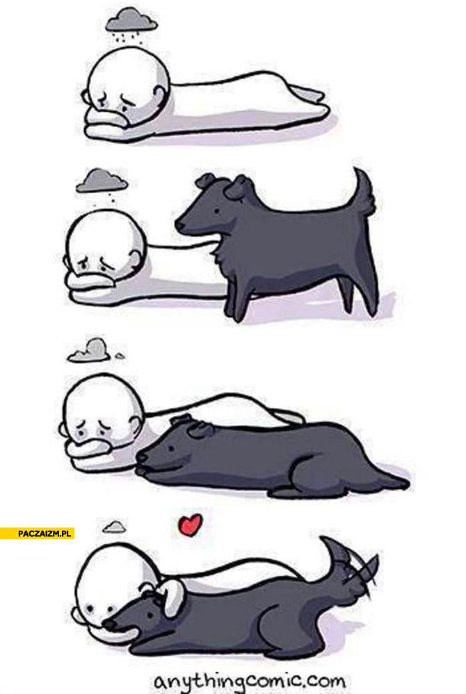 Sposób na zły humor pies