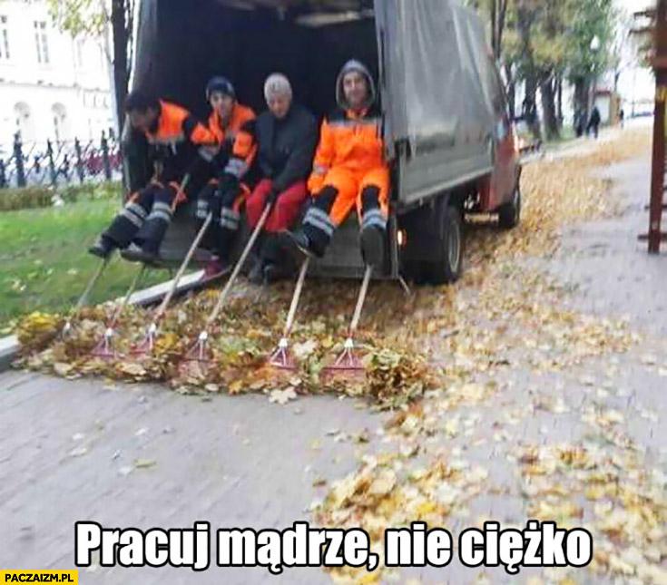 Sprzątanie liści w Moskwie – pracuj mądrze, nie ciężko