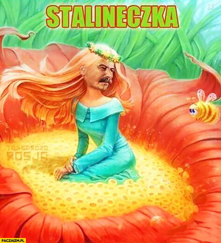 Stalineczka Stalin Calineczka przeróbka