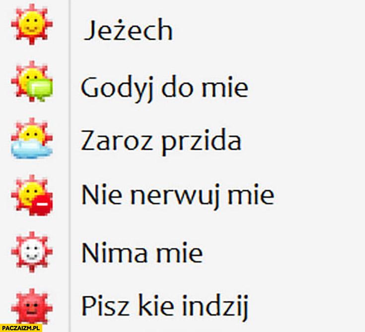 Statusy Gadu-Gadu po Czesku jeżech, godyj do mie, zaroz przyida, nie nerwuj mnie, nima mie, pisz kie indzij