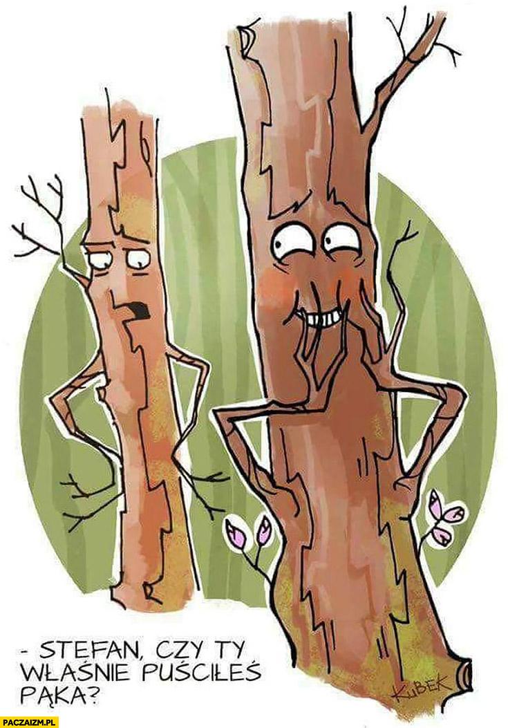 Stefan czy Ty właśnie puściłeś pąka? Drzewa bąka