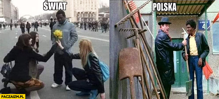 Świat czarny dostaje kwiaty, Polska czarny dostaje łopatę szpadel Alternatywy 4