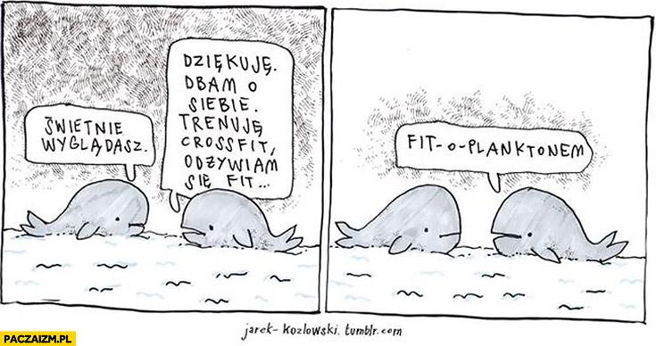 Świetnie wyglądasz, dziękuje dbam o siebie, odżywiam się fit-o-planktonem wieloryby