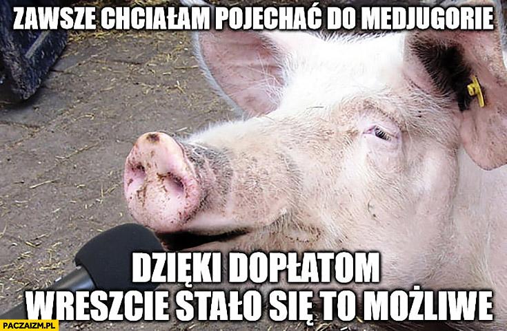Świnia zawsze chciałam pojechać do Medjugorie dzięki dopłatom wreszcie stało się to możliwe