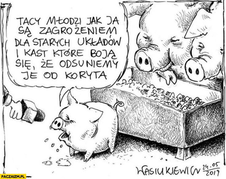 Świnka świnia prosiak tacy młodzi jak ja są zagrożeniem dla starych układów i kast, które boja się, że odsuniemy je od koryta