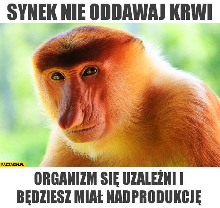 Synek nie oddawaj krwi, organizm się uzależni i będziesz miał nadprodukcję typowy Polak nosacz małpa