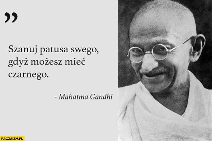 Szanuj patusa swego gdyż możesz mieć czarnego cytat Mahatma Gandhi