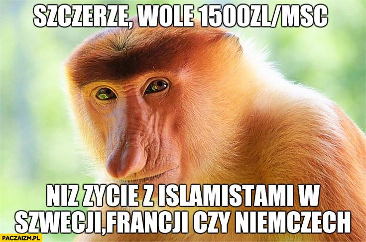 Szczerze wolę 1500zł na miesiąc niż życie z islamistami w Szwecji, Francji czy Niemczech typowy Polak nosacz małpa