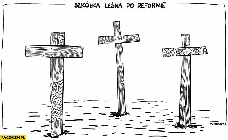 Szkółka leśna po reformie edukacji PiS krzyże