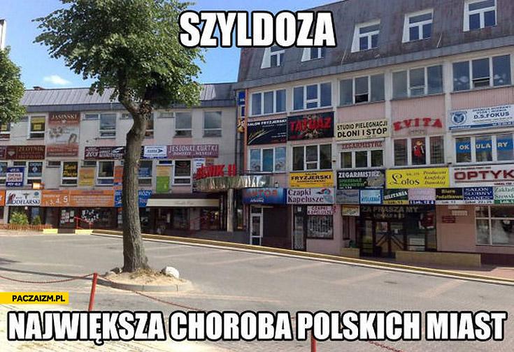 Szyldoza największa choroba polskich miast