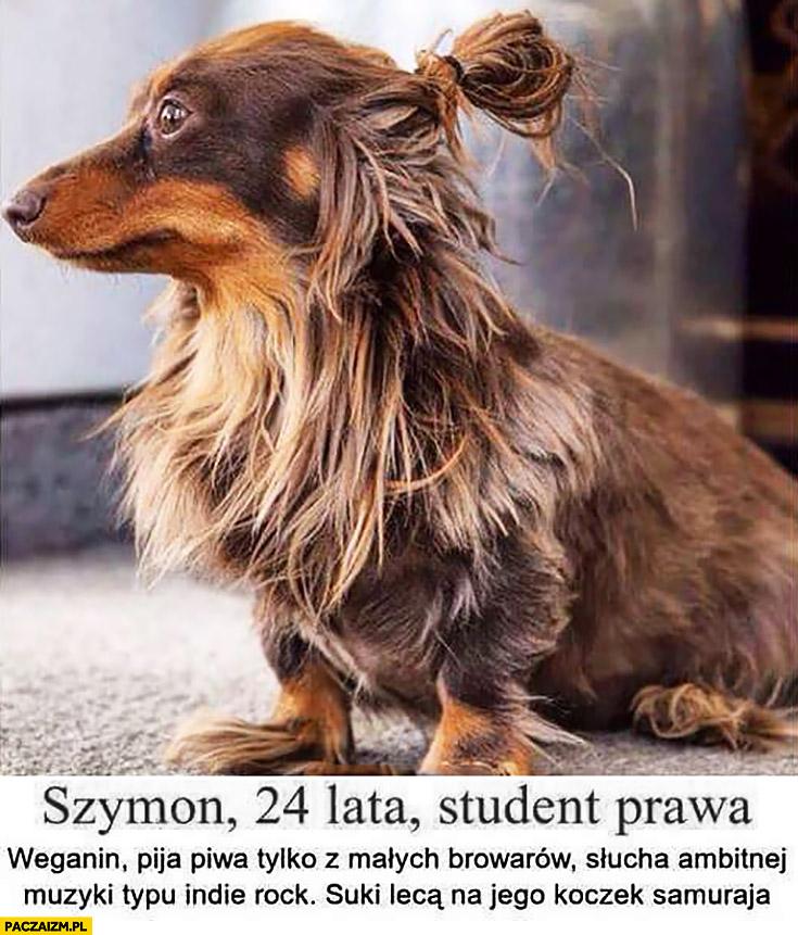 Szymon student prawa, weganin. Jamnik z koczkiem samuraja