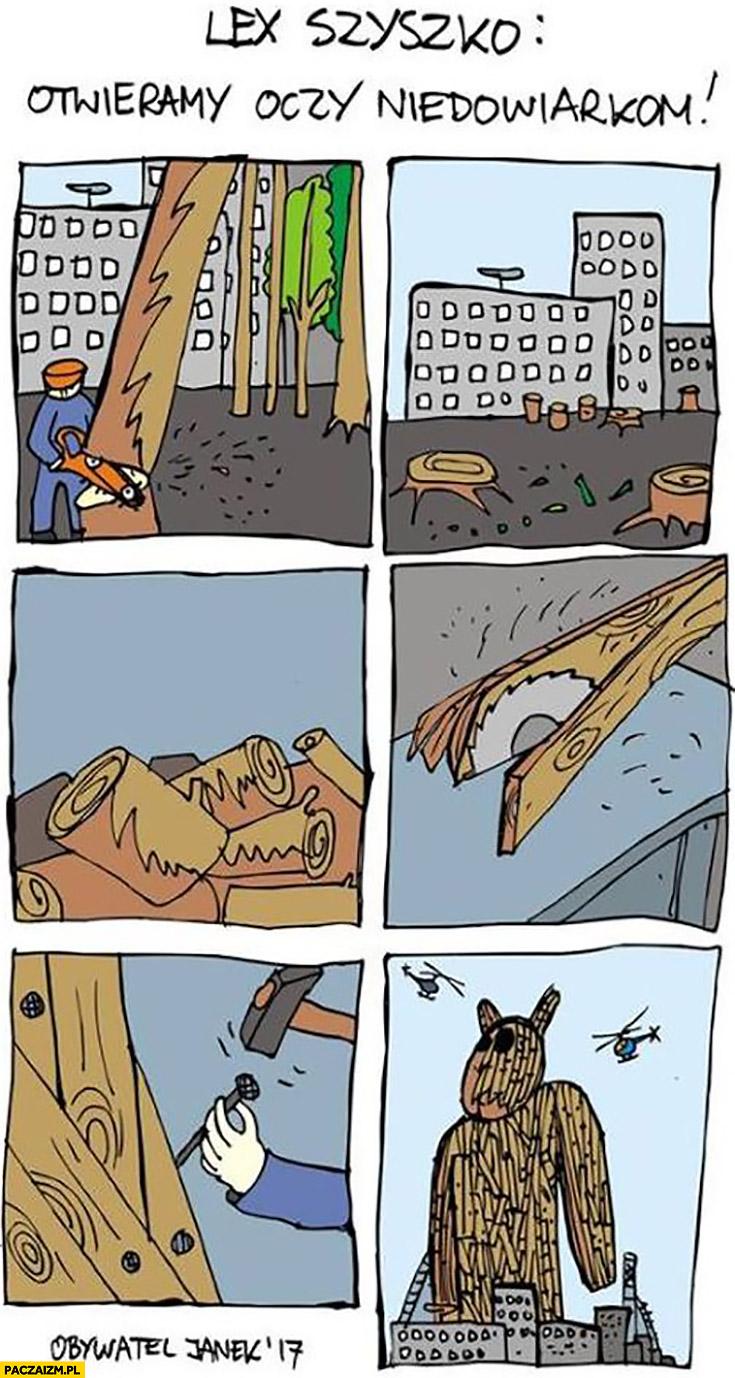 Szyszko wycinka drzew żeby zbudować misia z drewna otwieramy oczy niedowiarkom