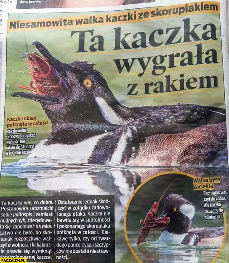 Ta kaczka wygrała z rakiem historia w gazecie