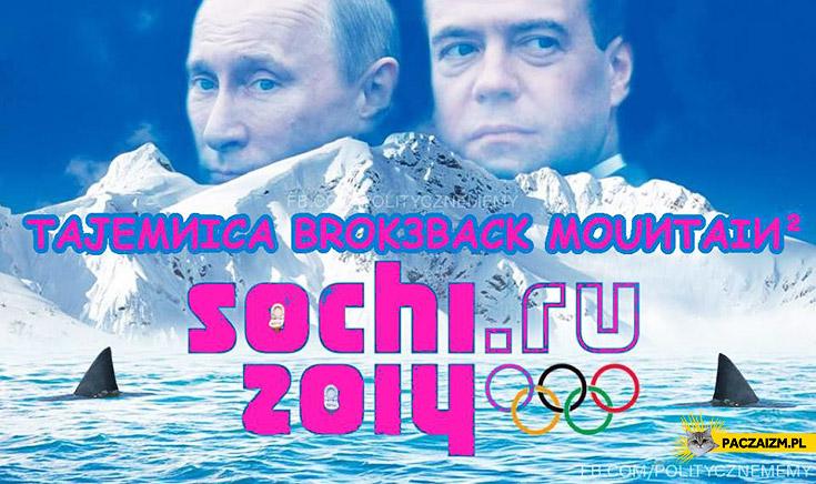 Tajemnica Brokeback Mountain Soczi
