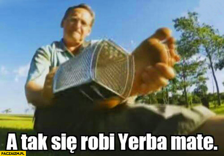 Tak się robi Yerba Mate Cejrowski skrobie stopę