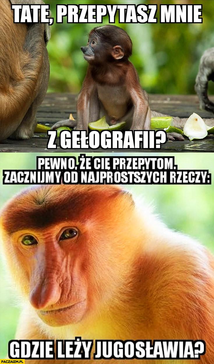 Tate przepytasz mnie z geografii? Gdzie leży Jugosławia? Typowy Polak nosacz małpa