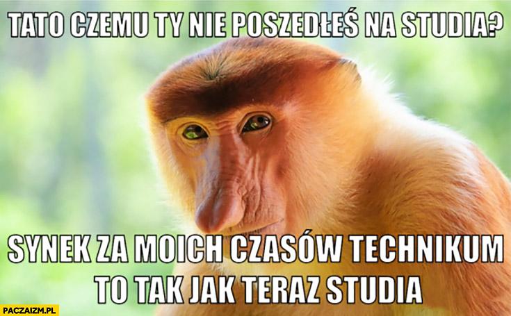 Tato czemu Ty nie poszedłeś na studia? Synek za moich czasów technikum to tak jak teraz studia typowy Polak nosacz małpa