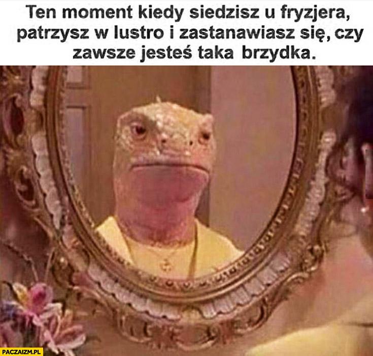 Ten moment kiedy siedzisz u fryzjera patrzysz w lustro i zastanawiasz się czy zawsze jesteś taka brzydka jaszczurka