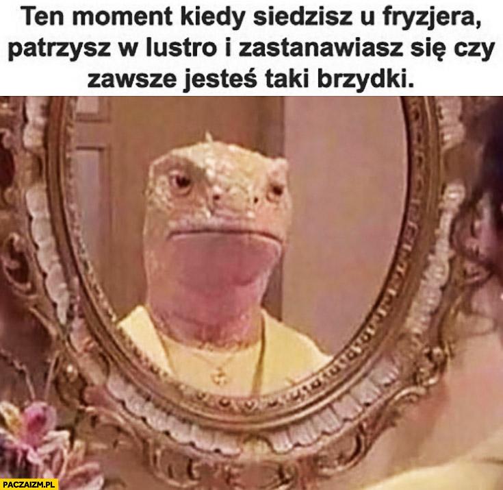 Ten moment kiedy siedzisz u fryzjera patrzysz w lustro i zastanawiasz się czy zawsze jesteś taki brzydki jaszczurka