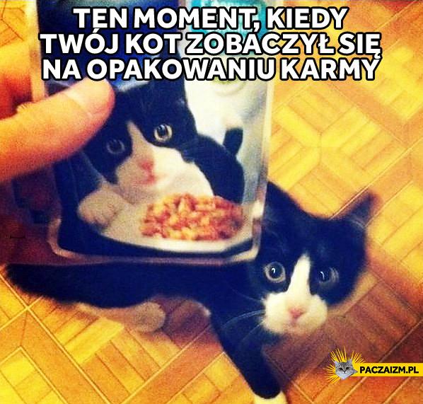 Ten moment, kiedy Twój kot zobaczył się na opakowaniu karmy